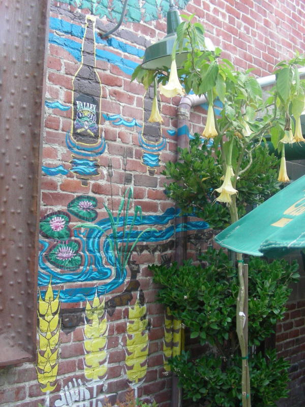 Patio art and trumpets