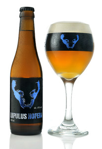 Lupulus Hopera beer