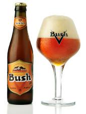 Bush_ambr%c3%a9e_225
