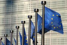 European Parliament, European Commission