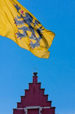 Flemish Flag