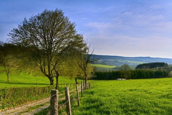 Belgian Nature Reserves