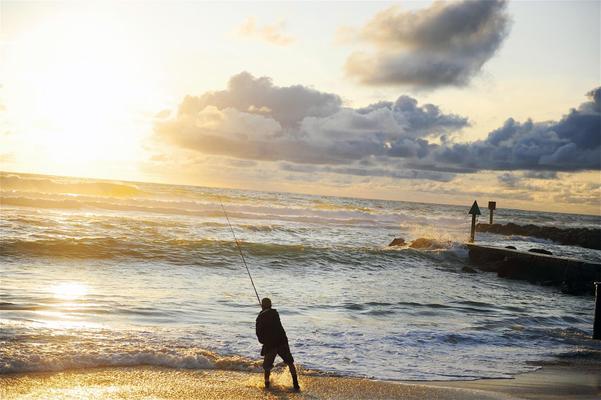 Sea fishing, Belgian coast