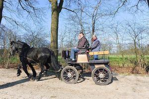Antwerpse Kempen, Horse & Cart