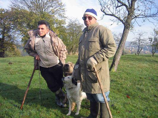 Luik coteaux herders