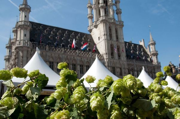 Brussels, Beer in Belgium, Belgian beer