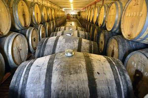 Brewing Process, fermentation