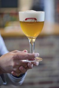 Bière des Ours, Brasserie La Binchoise