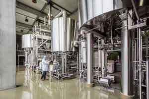 Bierkasteel, Brouwerij Van Honsebrouck