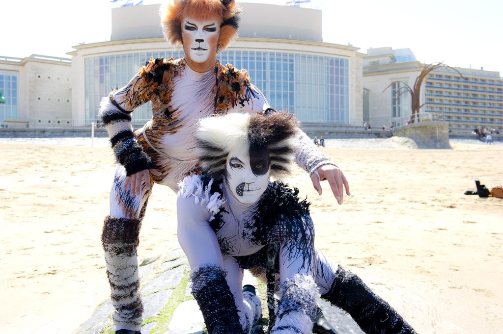 CATS in Ostend