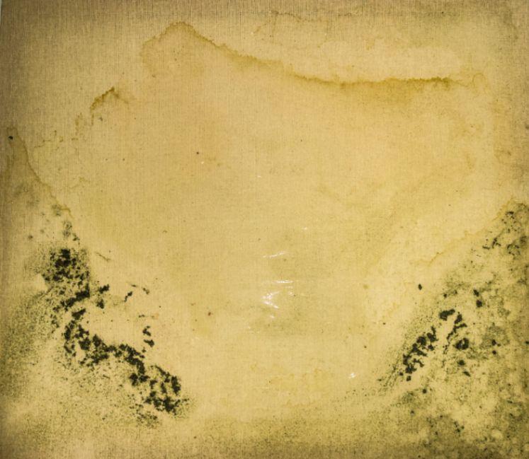 Obra: La transformación de la naturaleza III