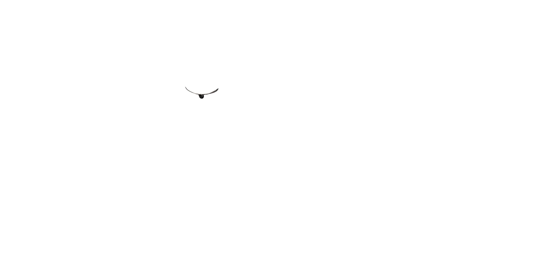 Obra: Aire