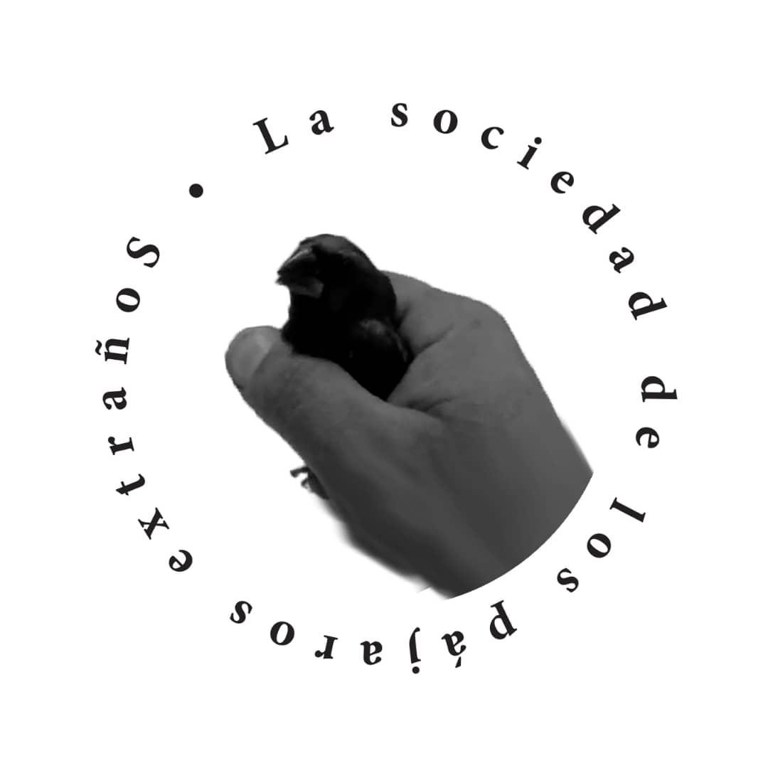 Obra:  Logo de la Sociedad de los Pájaros Extraños.