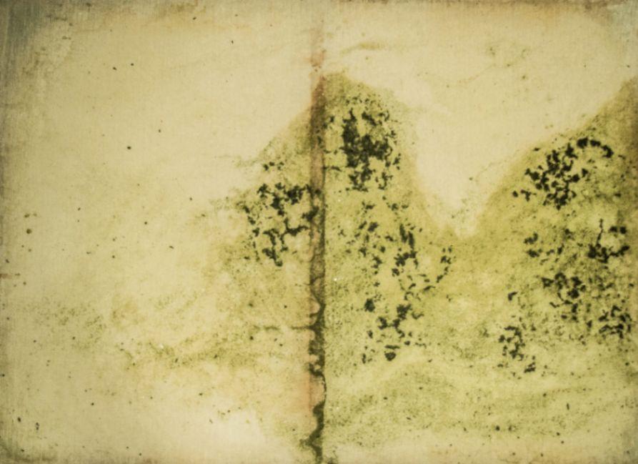 Obra: La transformación de la naturaleza II