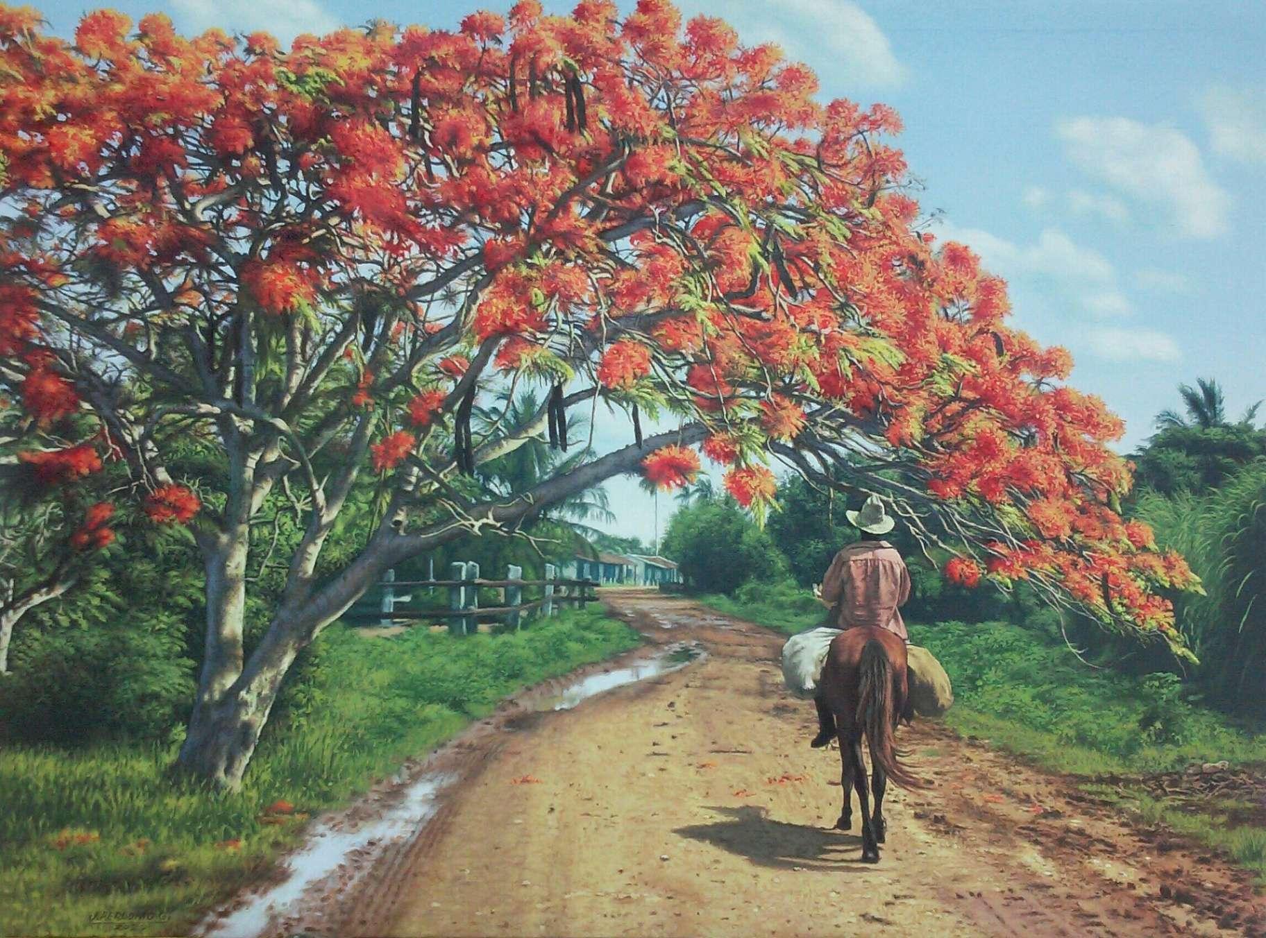 Obra: Flamboyan junto al camino