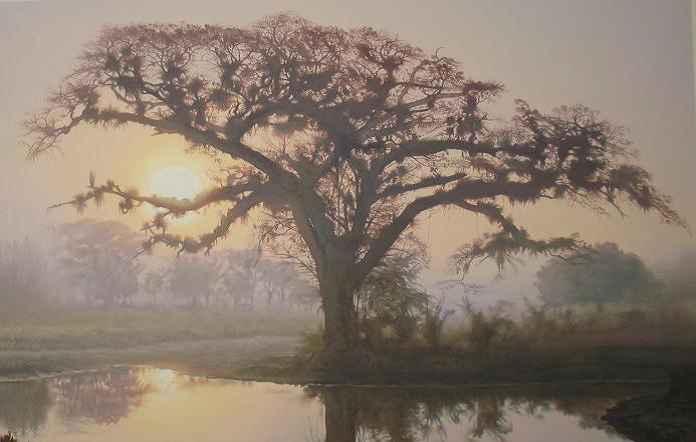 Obra: Amanecer con niebla