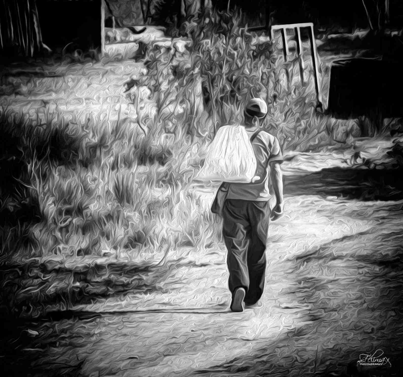 Obra: El Caminante
