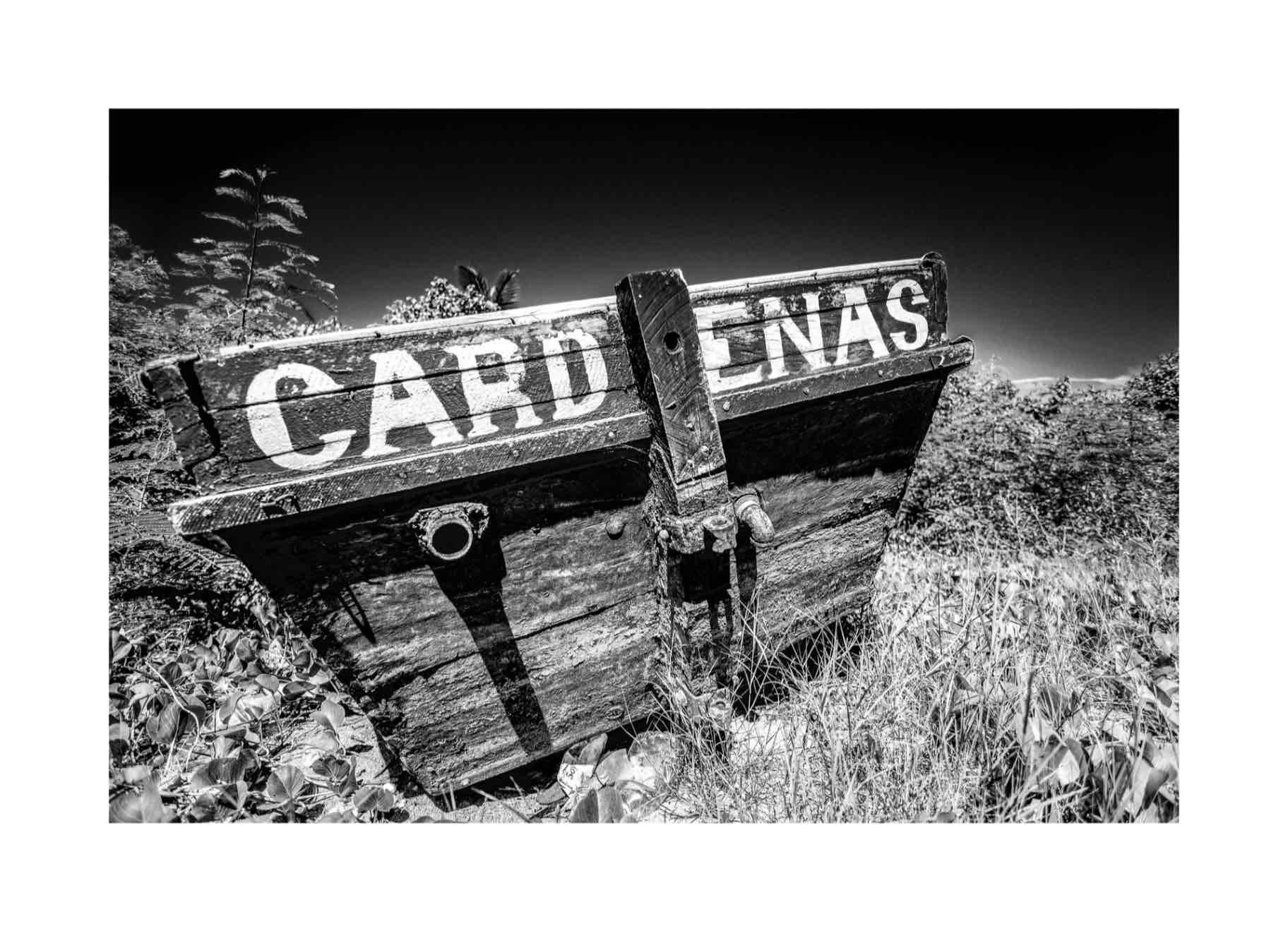 Obra: Cárdenas