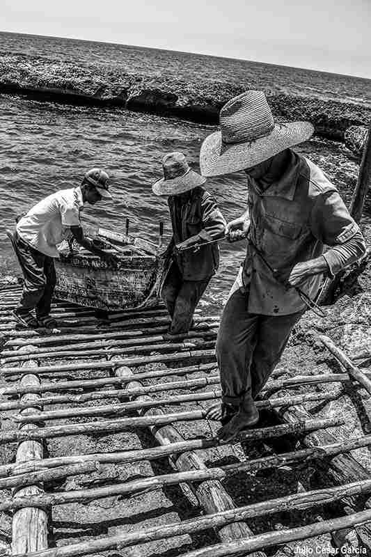 Obra: Pescadores. De la serie: Ciénaga adentro