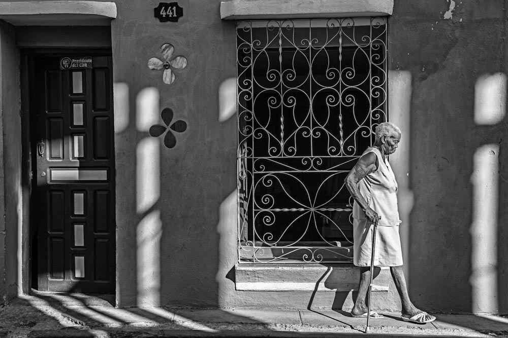 Obra: La sombra de los años
