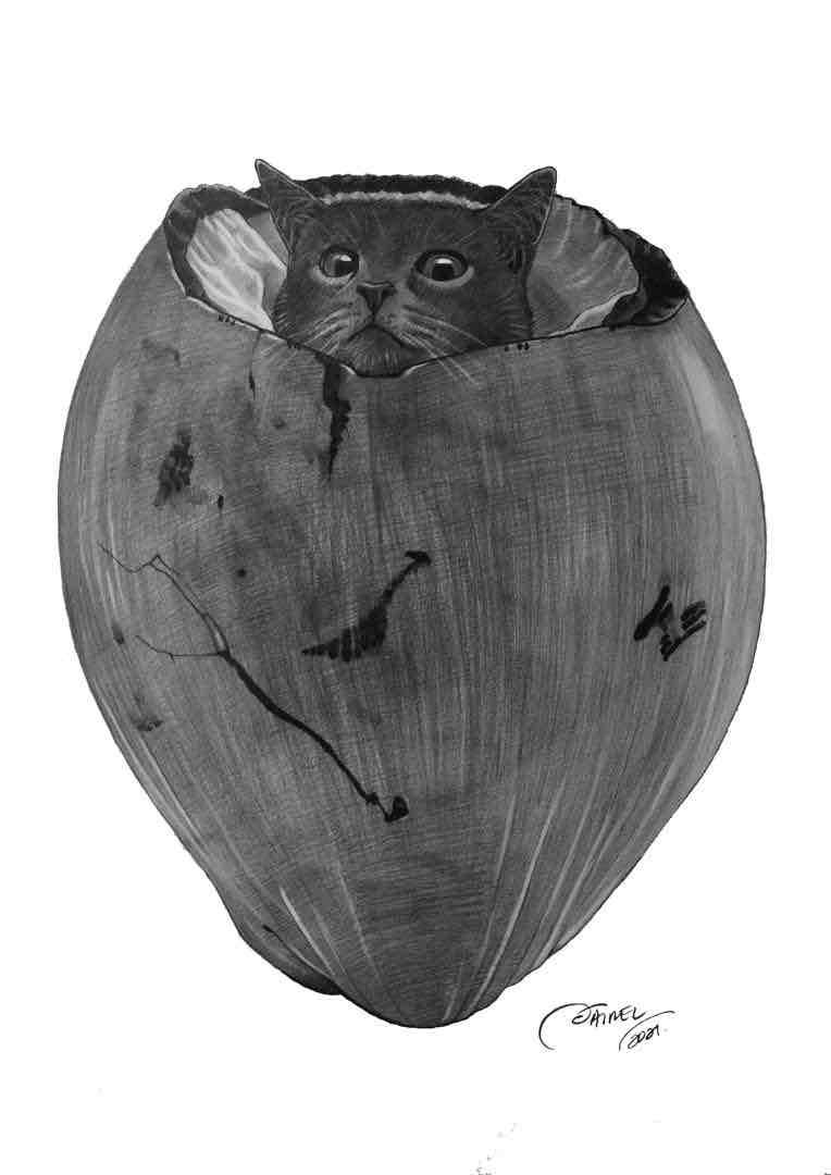 Obra: El nacimiento de el Capitán Plin