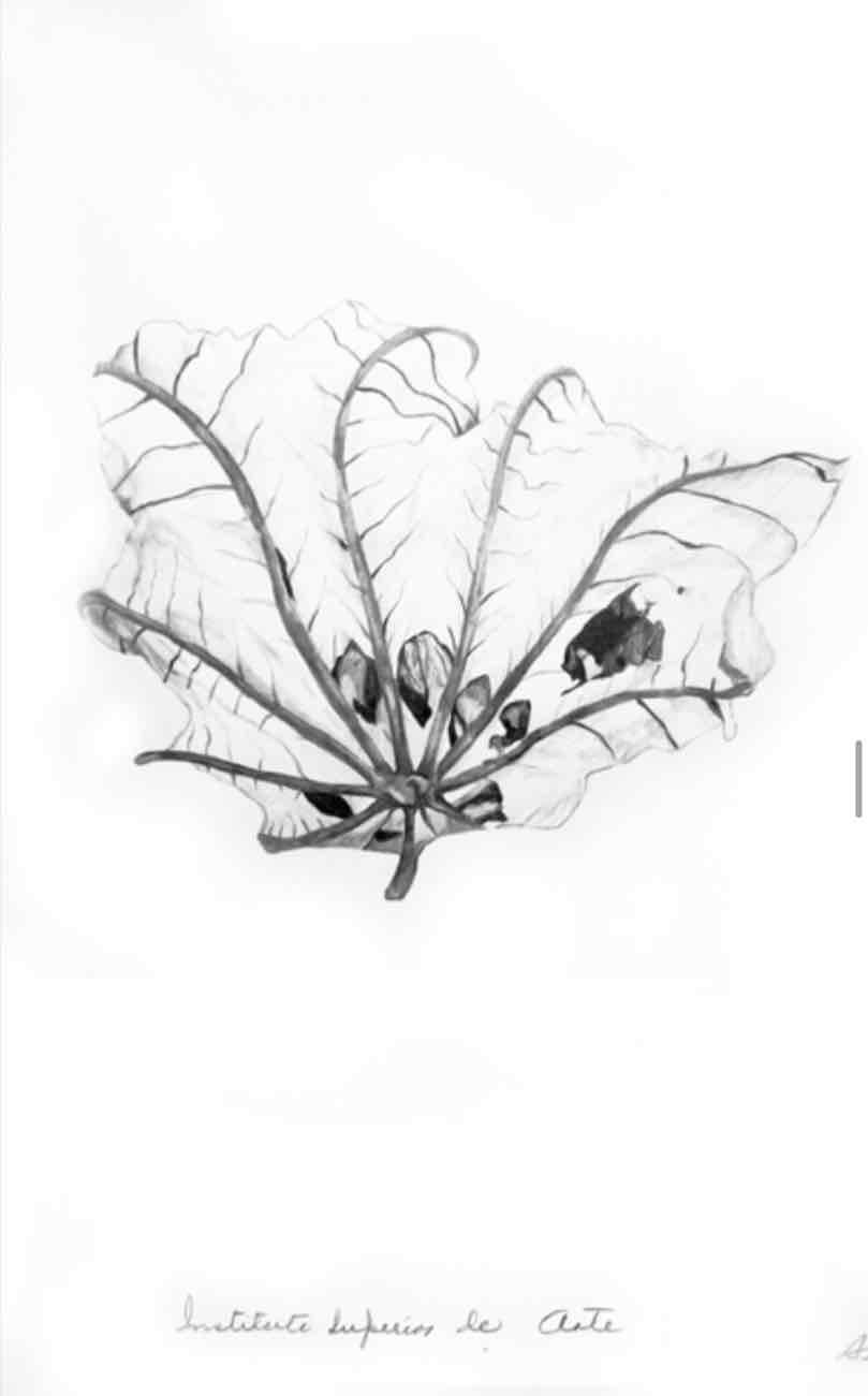 Obra: Instituto Superior de Arte
