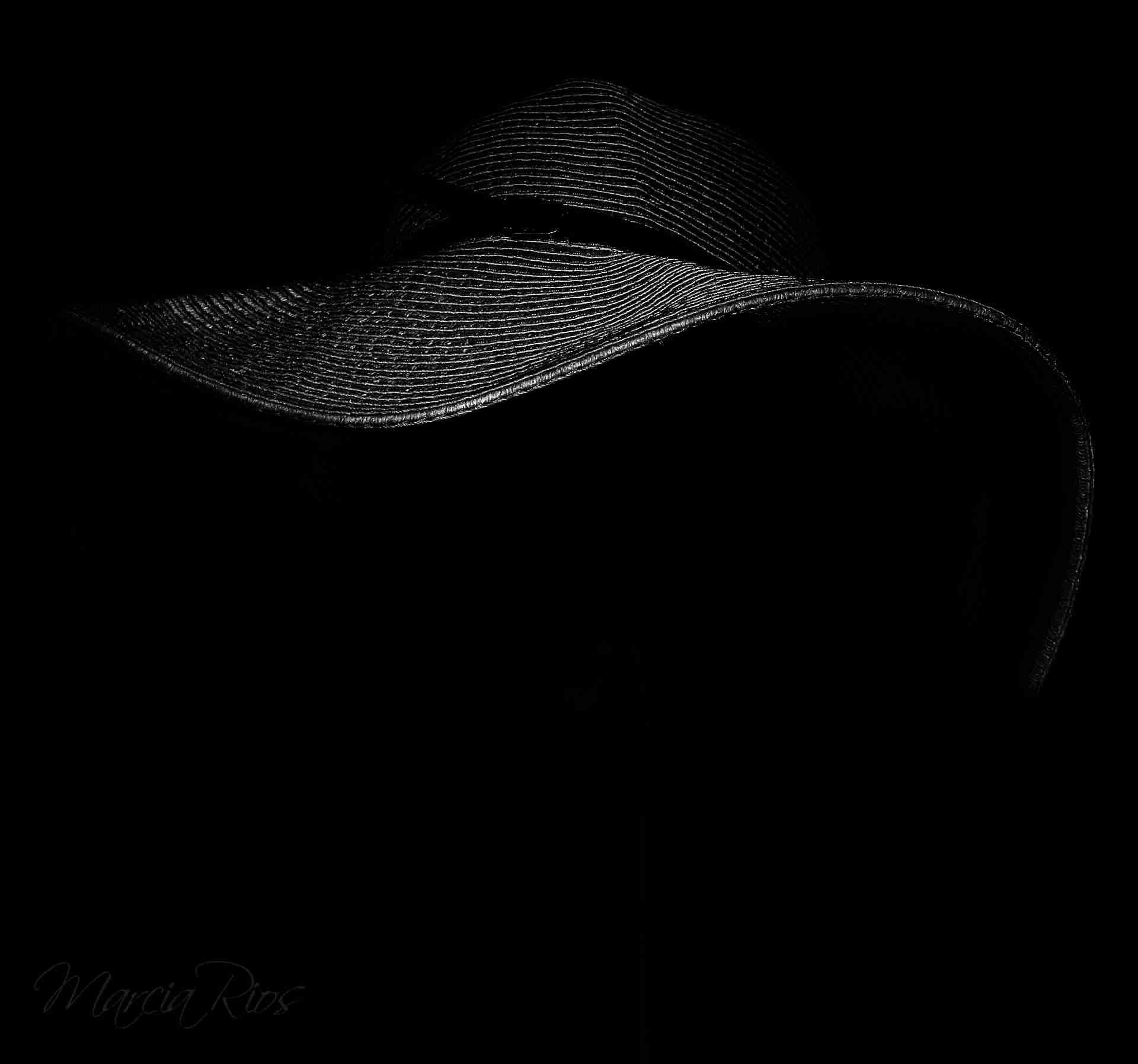 """Obra: """"Hoy el rocío borrará la divisa de mi sombrero"""""""