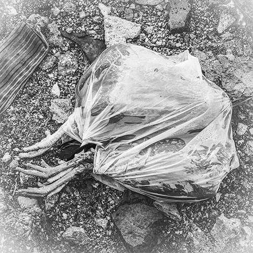 Obra: De la serie: Residuos