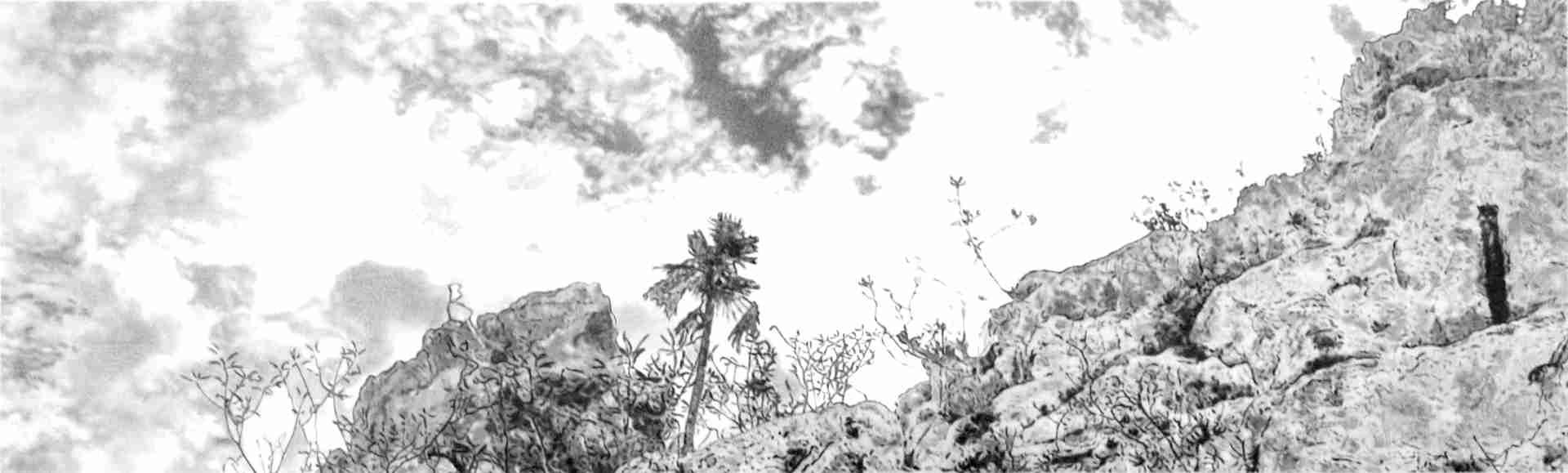 Obra: En lo alto de la peña blanca