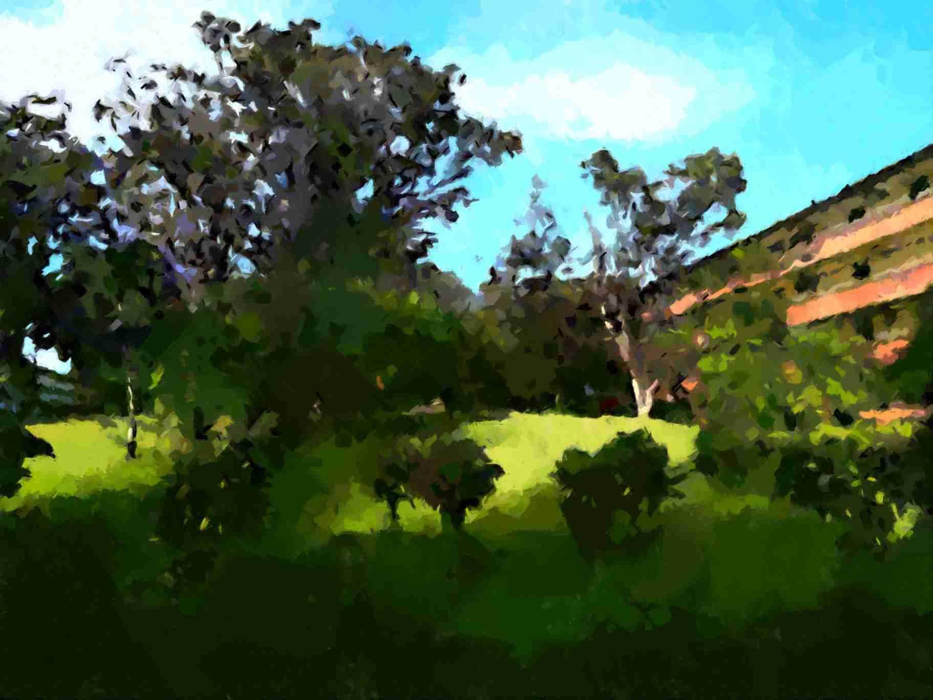 Obra: Jardín bajo el sol
