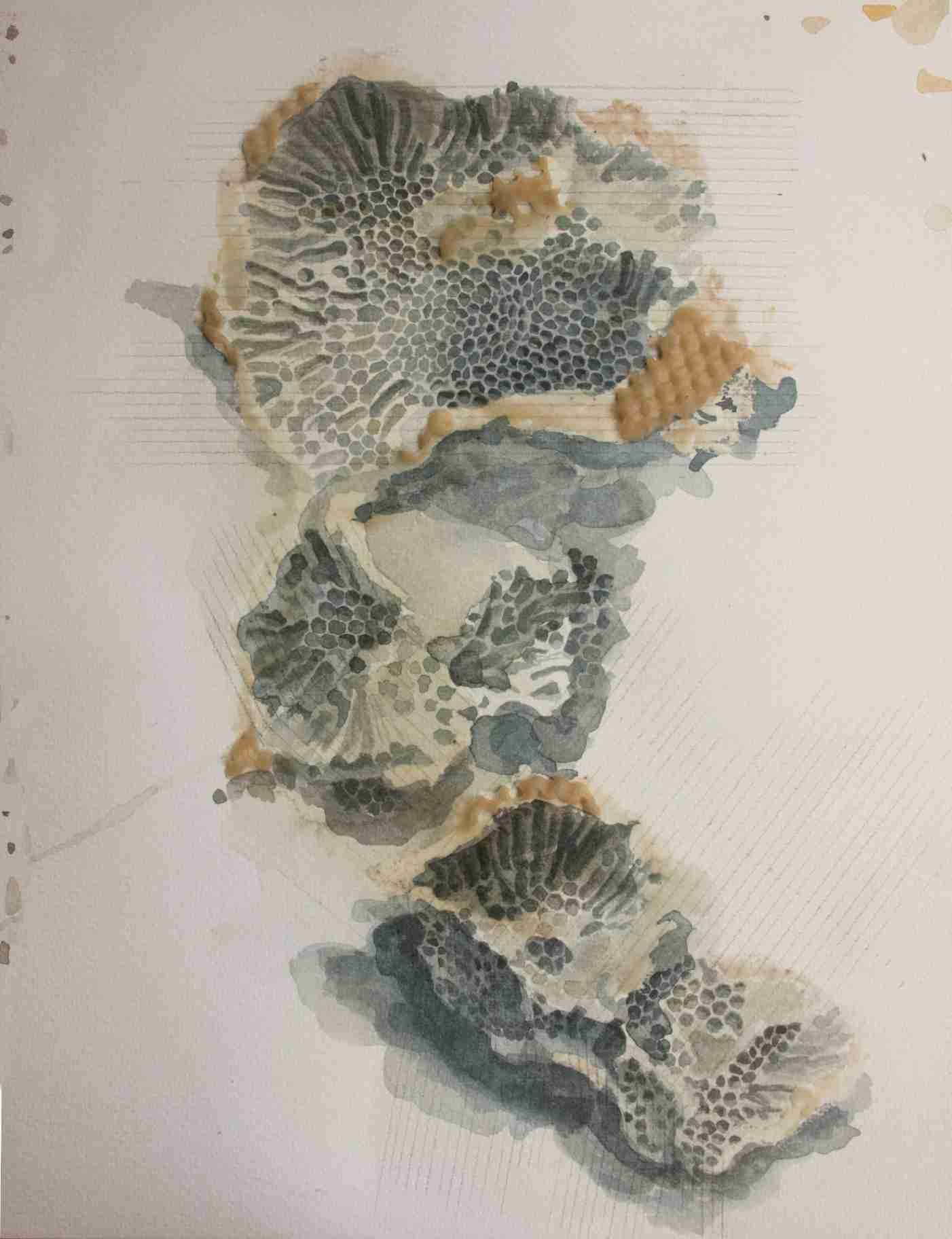 Obra: Organismo fosil #17
