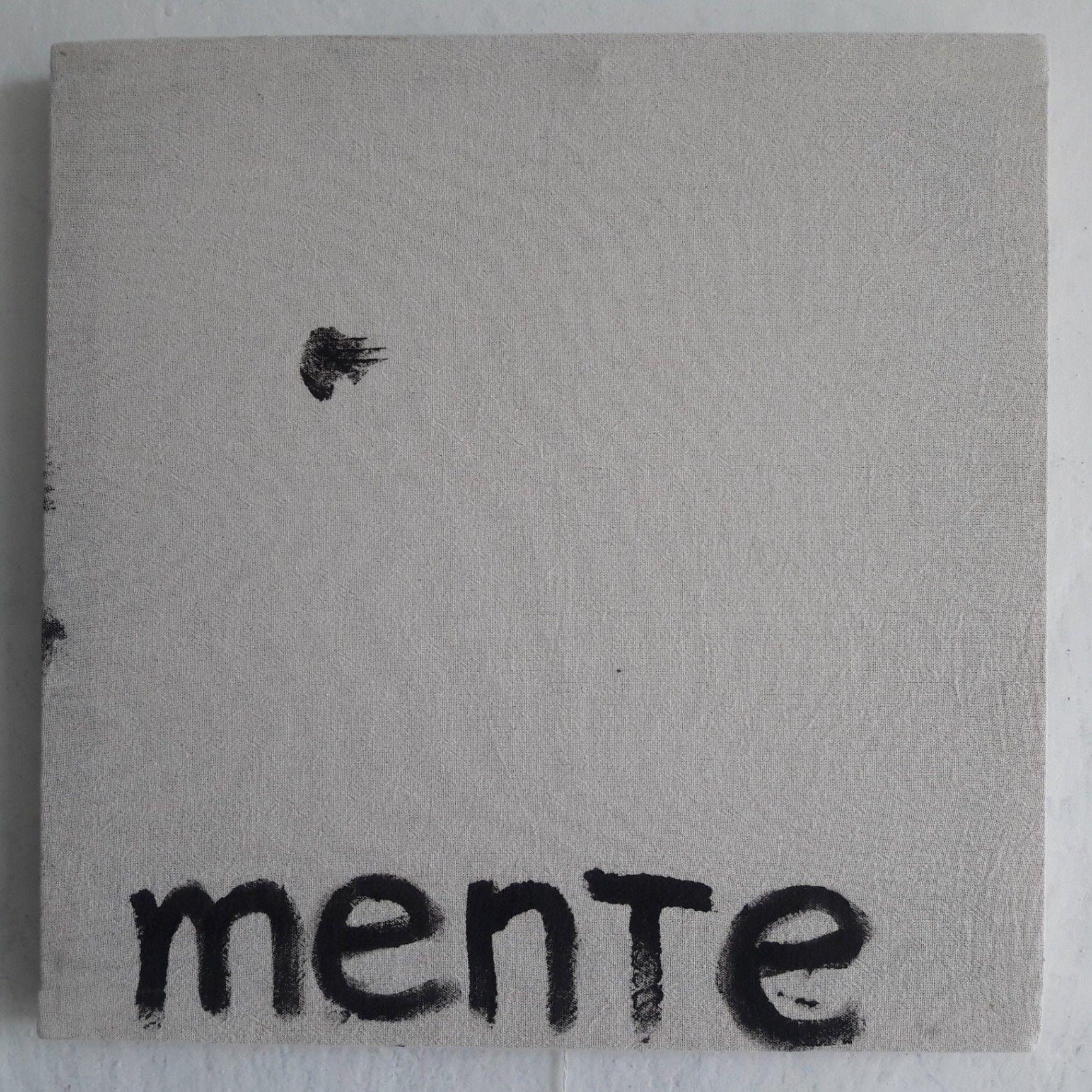 Obra: Fragmento de Políticamente incorrecto. De la Serie Microbrigada artística. Alegoría Klein-Saavedra.