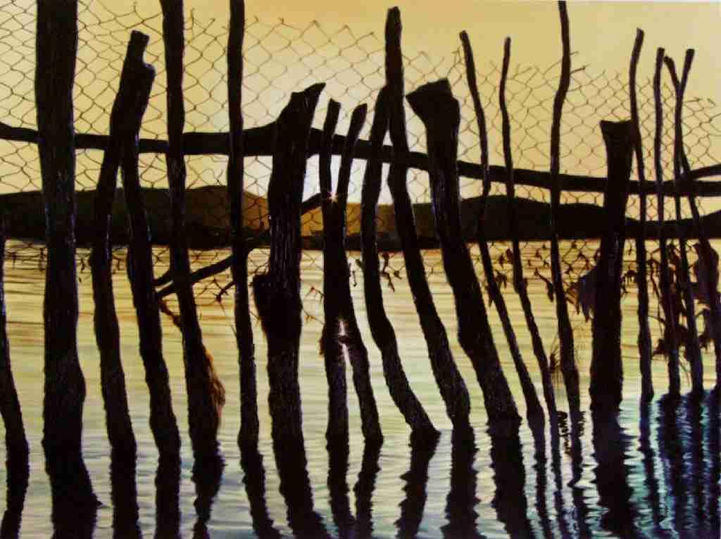 Obra: Fronteras