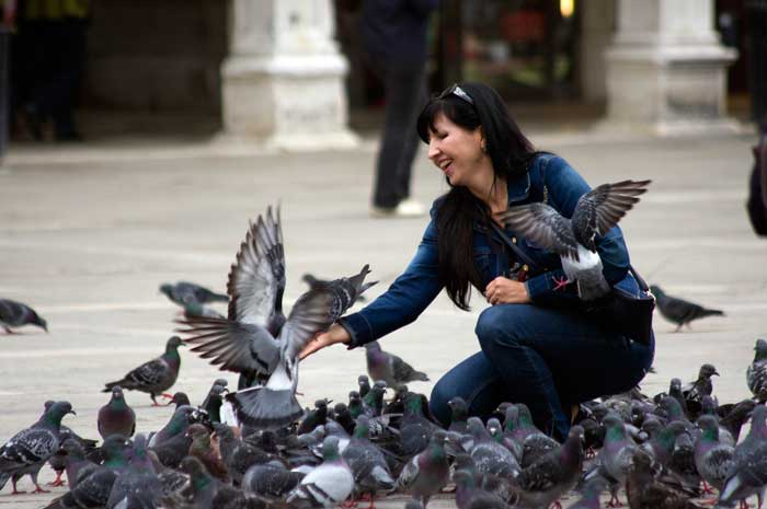 Feeding Pigeons in San Marco, Venice