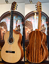 Bolivian Rosewood back and sides, Cedar top Concert Classical Guitar, The Tiger