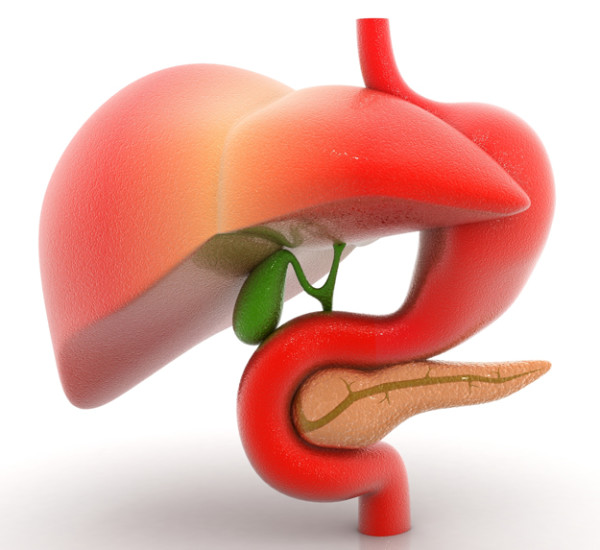 gallbladder pain
