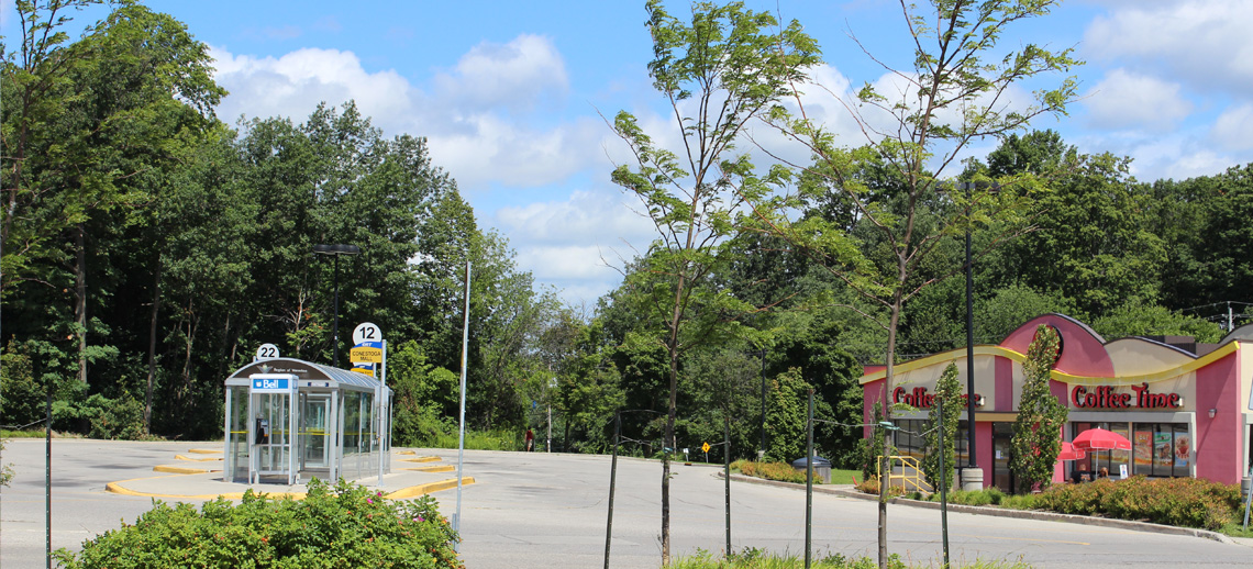 Forest Glen Plaza, home to a Grand River Transit terminal