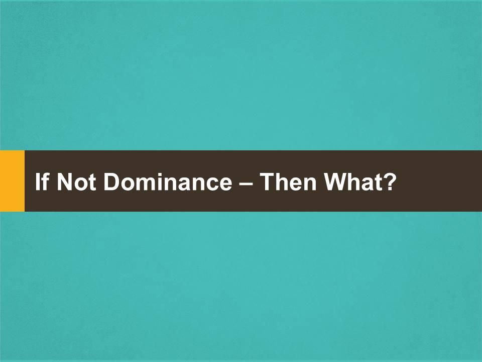 Dominance Education 8