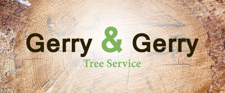 Gerry & Gerry Tree Service provides Tree Services in Round Rock, TX