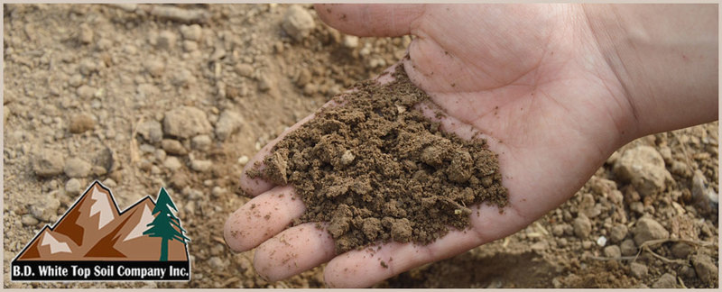 B D White Topsoil Company is a Topsoil Supplier in Gardena, CA