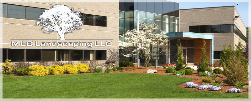 MLG Landscaping LLC offers services for Commercial Landscapes in East Hampton, CT