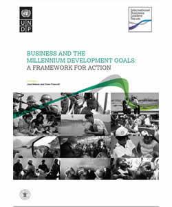 Business and the Millennium Development Goals: A Framework for Action