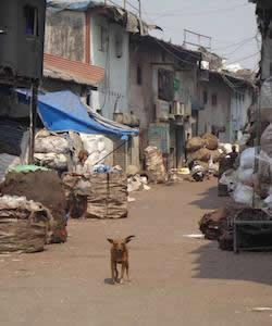 Corrupt Space: Mumbai's Protest Slum
