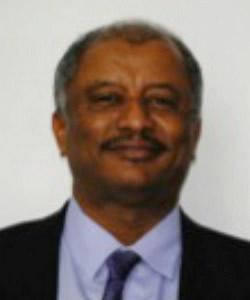 Abubaker Ahmed Al-Shingieti