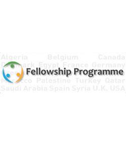 Alliance of Civilizations Fellowship Programme