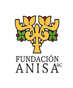 Anisa Foundation