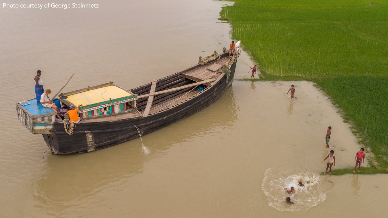 A boat with children swimming near rice paddies in Bangladesh