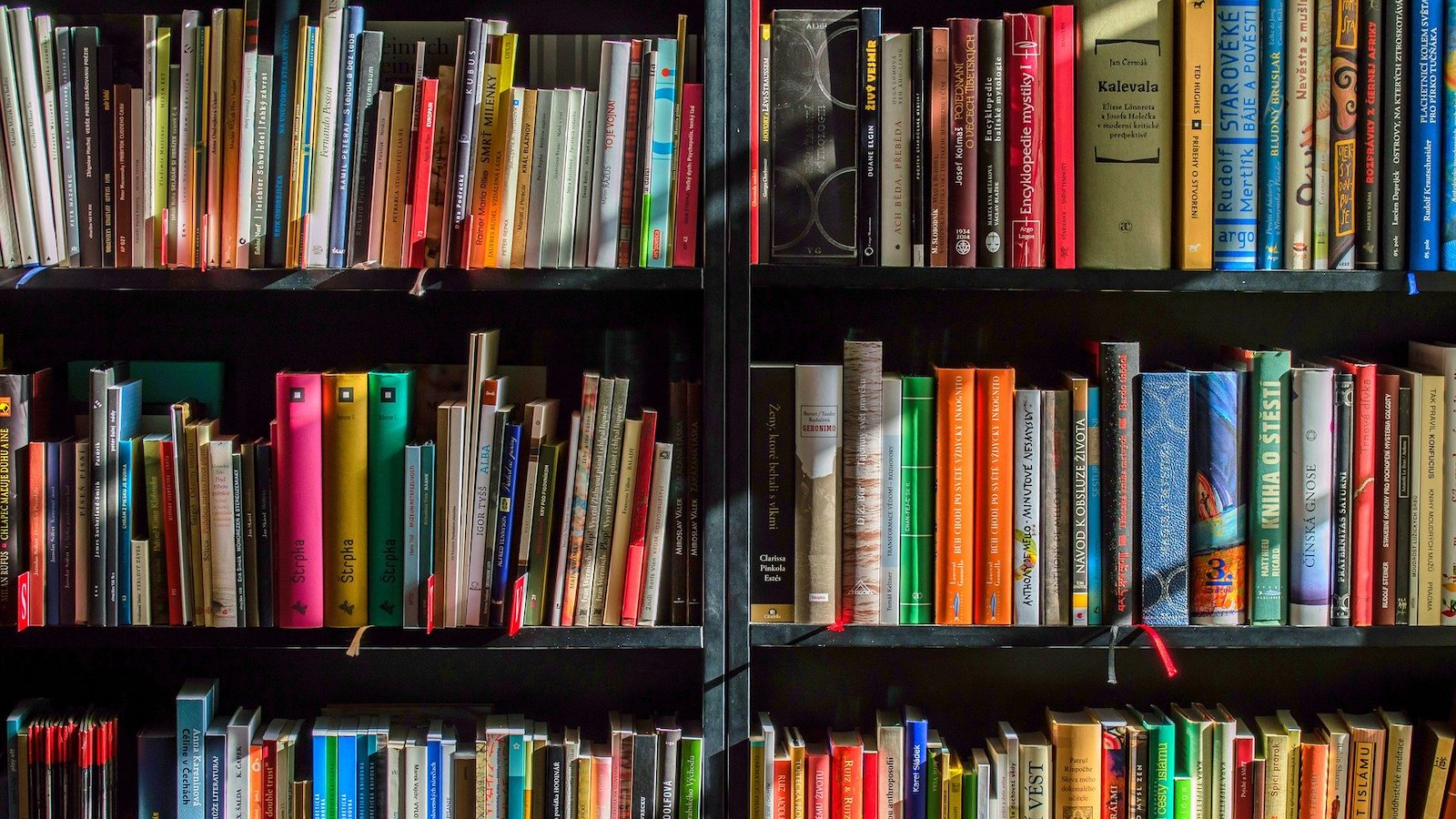Books on a series of shelves