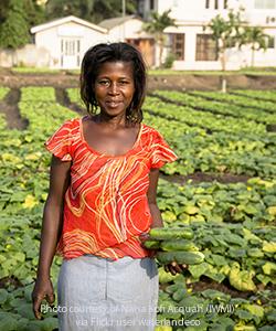 Ghanacucumberfarmer
