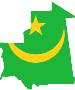 Mauritania's 2007 Transition to Democracy: Lecture, Discussion, and Lunch